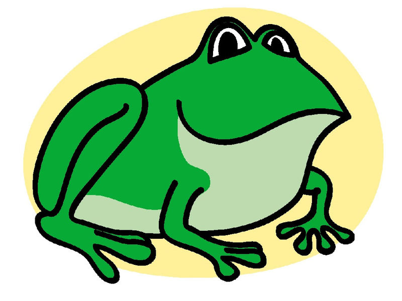 Frog Pictures For Kids Green - Coloring Sheets