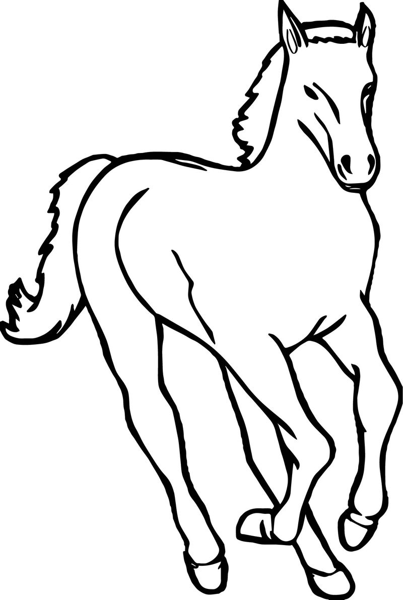 Front Arabian Horse Coloring Page