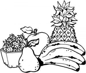 Fruits coloring page for kids