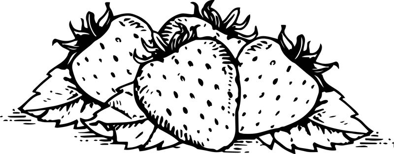 Fruits Free Downloads Fruits Download Coloring Page