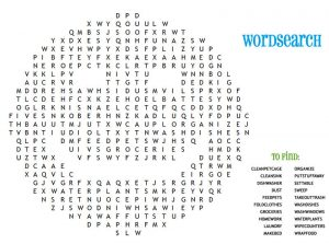 Fun word searches for kids new