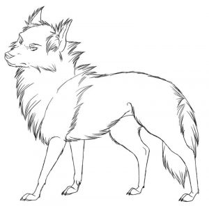 Furry wolf coloring pages