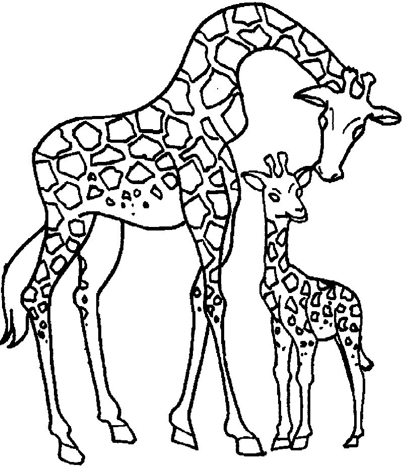 Giraffe Mother And Child Coloring Page