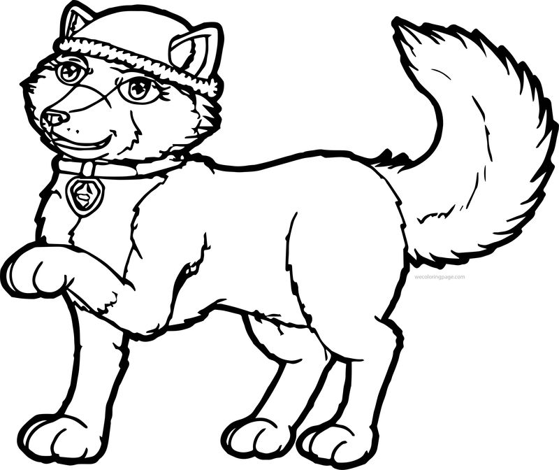 Girl Paw Patrol Perfect Good Amazing Pup Dog Coloring Page