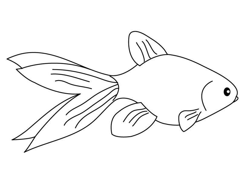 Goldfish Coloring Pages For Kids