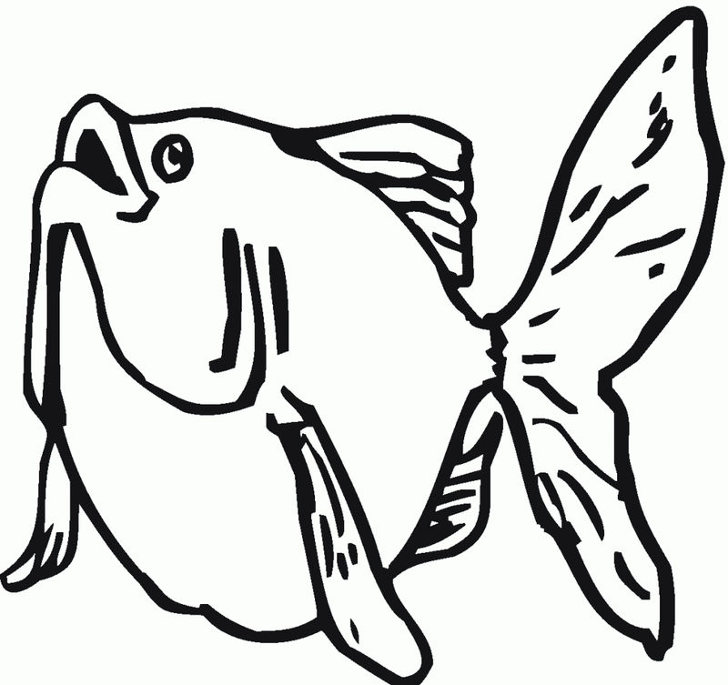 Goldfish Coloring Pages Pictures