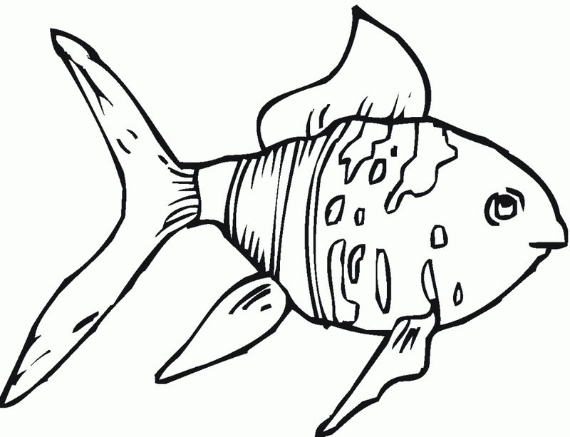 Goldfish Coloring Pages Printable