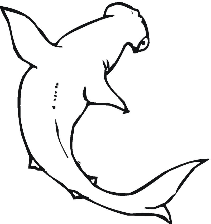 Hammerhead Shark Coloring Pages