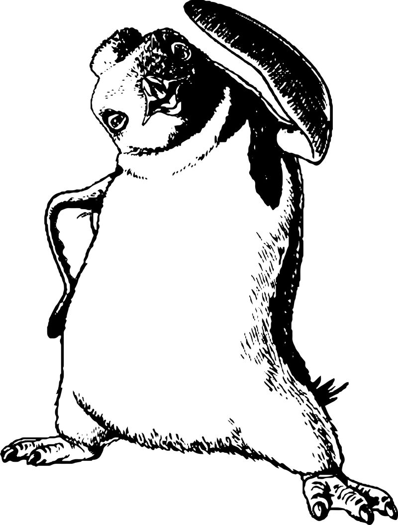 Happy Feet Coloring Pages 04