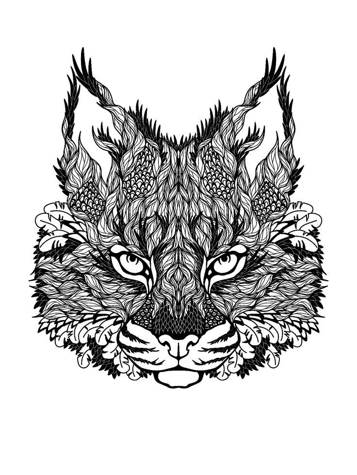 Hard Cat Coloring Pages For Adults