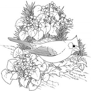 Hard coloring pages flowers