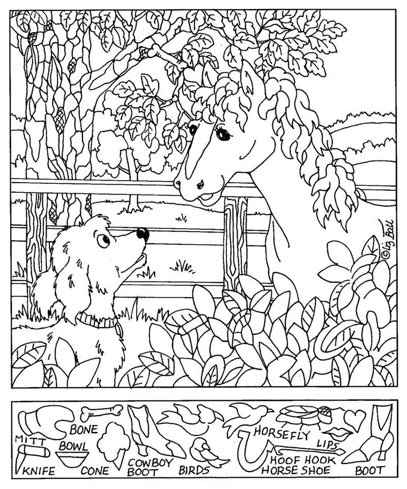 Hidden Picture Worksheet Horse Coloring Sheets
