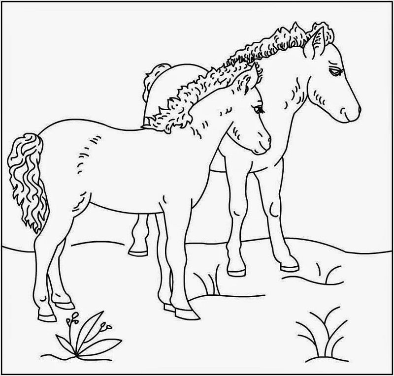 Horse Activities For Kids Coloring