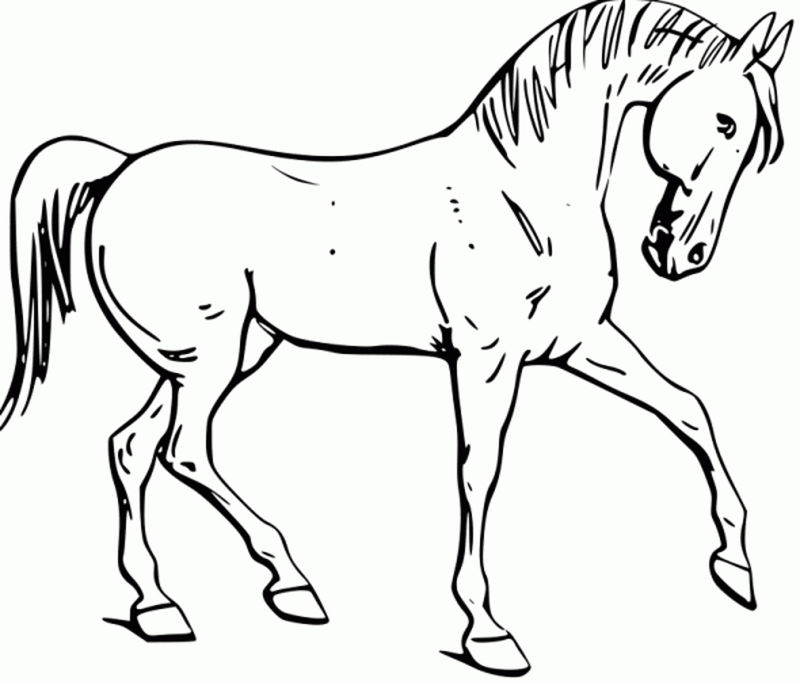 Horse Color Page Printable