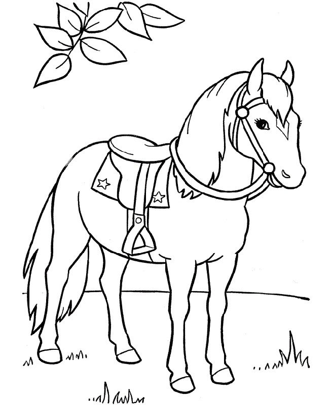 Horse Color Sheet Free