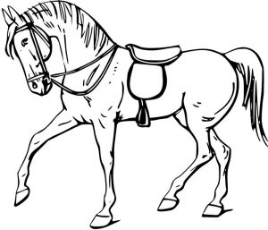 Horse coloring page for kindergarten