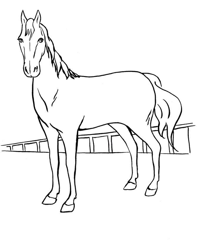 Horse Coloring Pages Kids