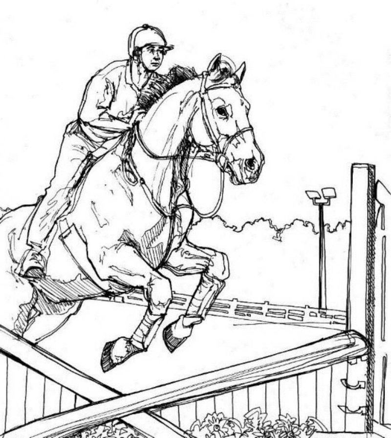 Horse Jumping Coloring Page