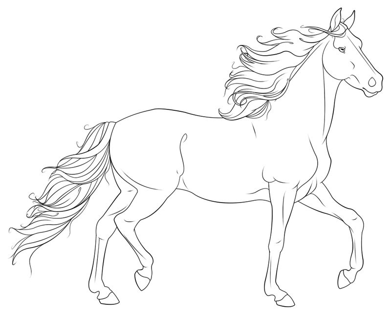 Horse Line Art Coloring Page