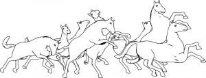 Horses coloring page