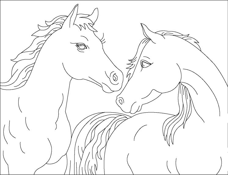Horses Coloring Page 1