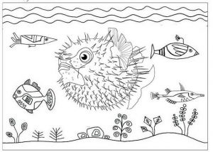Inflated puffer fish coloring page