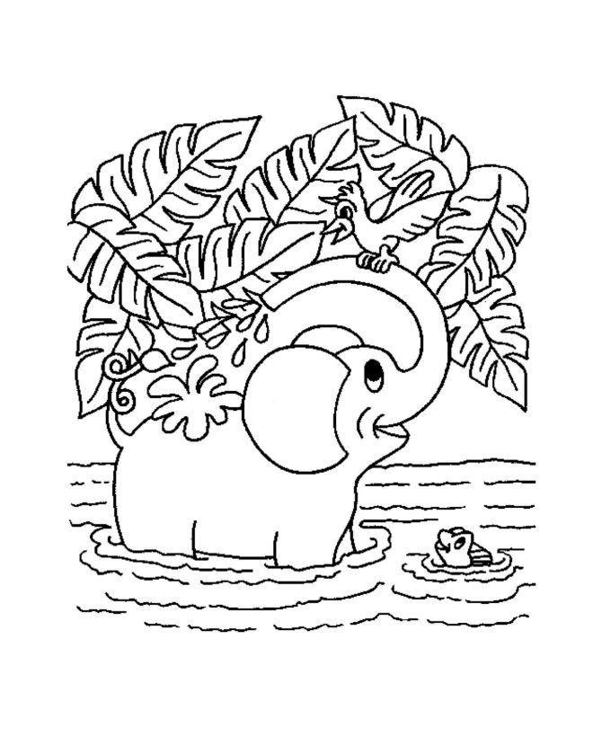 Jungle Coloring Pages For Kids