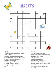 Kids crossword puzzles insect