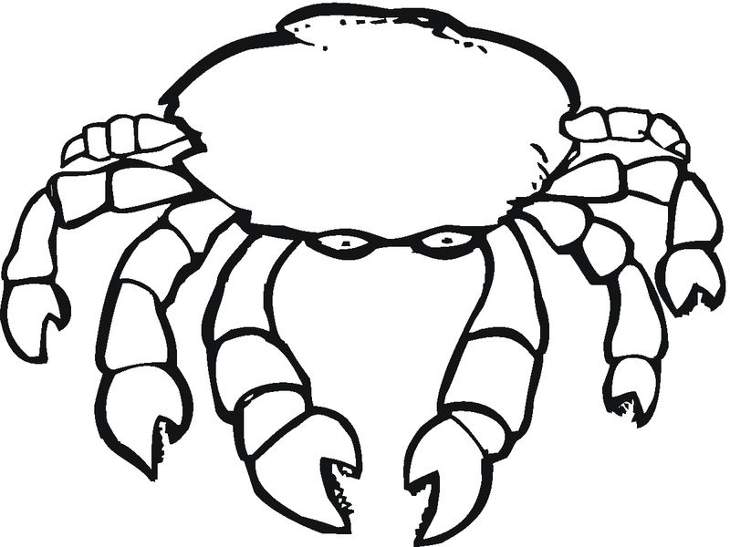 Kids Printable Crab Coloring Pages