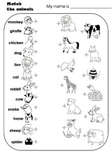 Kindergarten english worksheets pdf animal