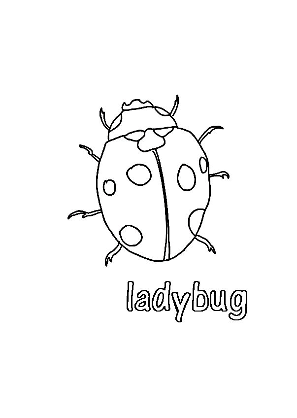 Ladybug Coloring Pages Kids