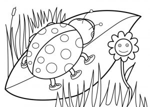 Ladybug spring coloring pages