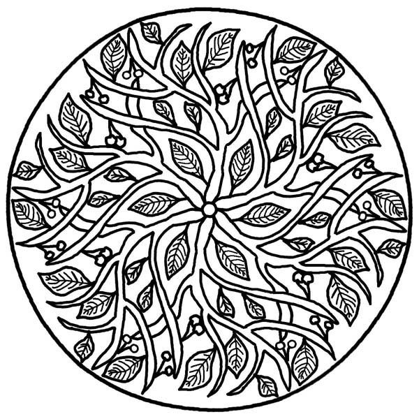 Leaf And Branch Floral Mandala Coloring Page