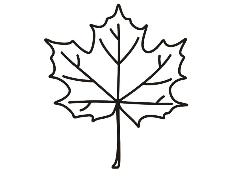 Leaf Coloring Page Easy