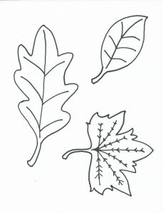 Leaf coloring page for kids 1