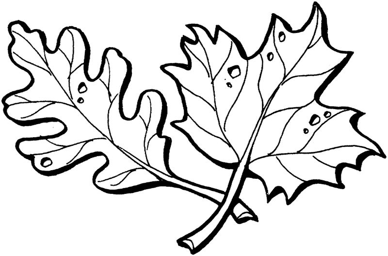 Leaf Coloring Page Practice 001
