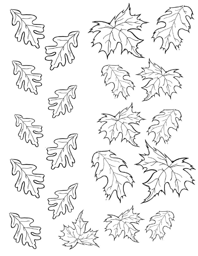 Leaf Coloring Page Printable