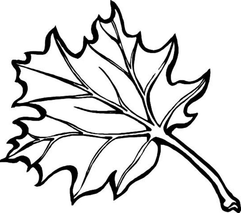 Leaf Coloring Pages Autumn Fall 001