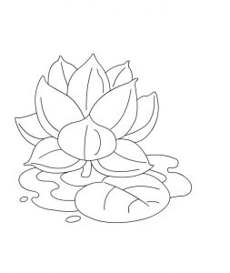 Lotus flower coloring pages for kids 001