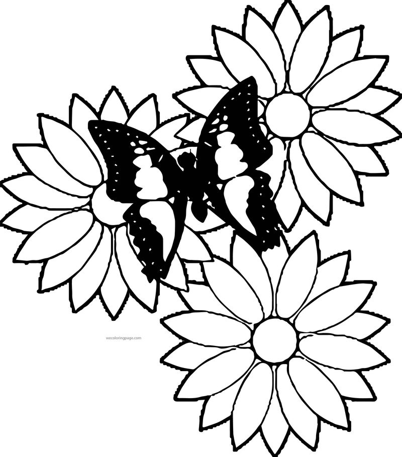 May Flowers Clip Arts May Flowers Best Coloring Page