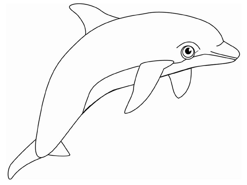 Mermaid And Dolphin Coloring Pages