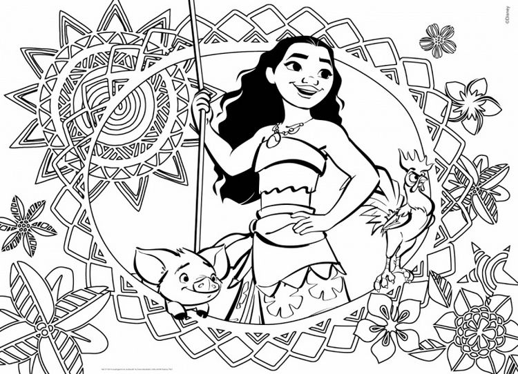 Moana Cover Coloring Book