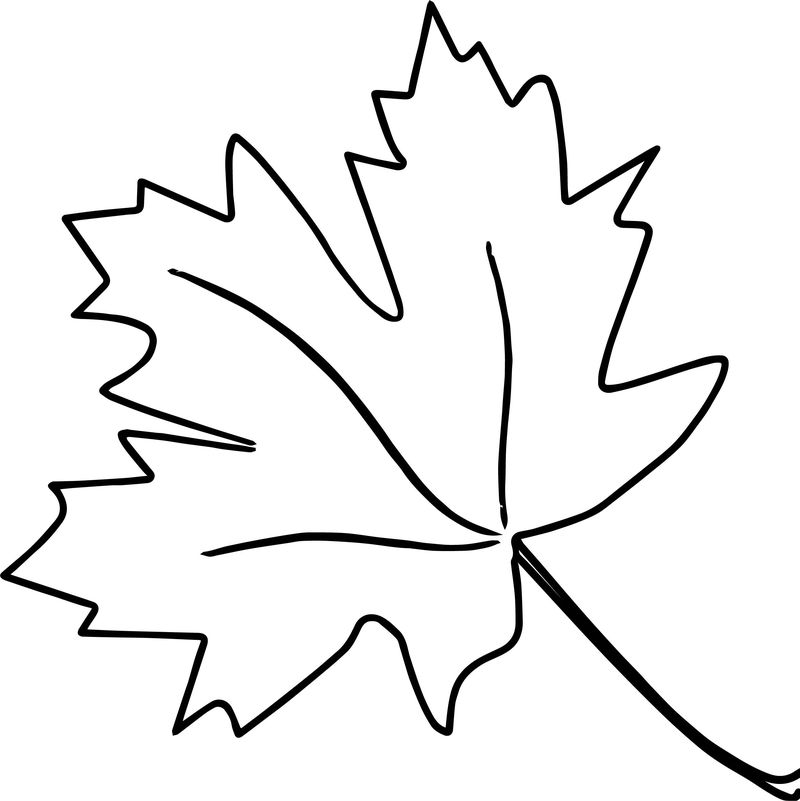 New Autumn Leaf Coloring Page