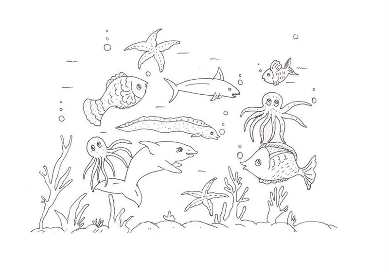 Ocean Animals Coloring Pages For Kids 001