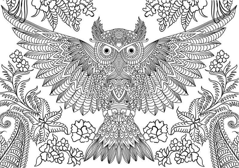 Owl Coloring Pages For Adult To Print