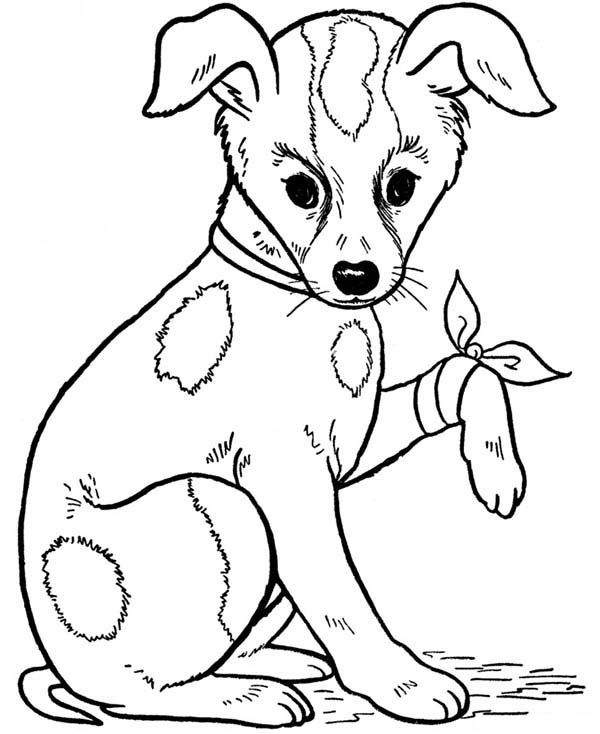 Patch Dog Coloring Pages