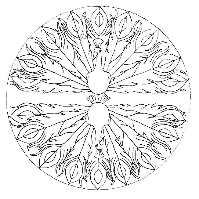 Peacock Animal Mandala Coloring Pages
