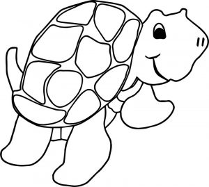 Perfect tortoise turtle coloring pages