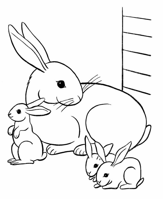 Pet Rabbit Family Coloring Page