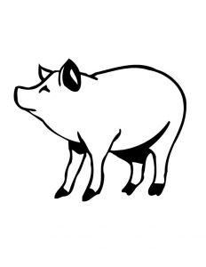 Pig coloring pages images